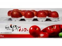 [초록빛농원] 부사 2호 5kg(15~16과) 고급선물용2  2020년 사과