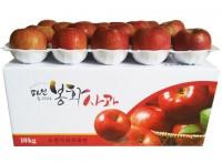 [초록빛농원]시나노스위트  6호 10kg [간식용] (37~40과)