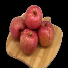[봉화설송농원]부사 10kg 한입사과 가정용 48과