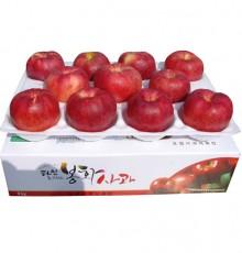 초록빛농원 홍로 7호 10kg(41-44과) 2020년