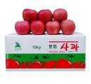 [초록빛농원] 산사과부사 7호10kg(44과)