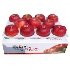 [초록빛농원] 산사과부사  9호 [선물용] 5kg(17과 내외)
