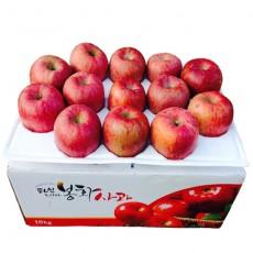 [미래농원]부사(우박 맞은 사과) 10kg (28과 이내)