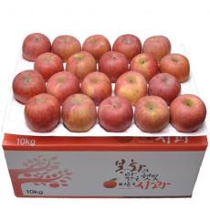 용이네농장 부사 사과 (후지) 5kg 12과